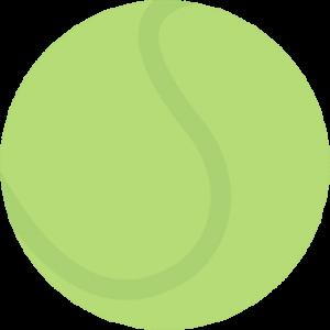 Boarding Tennis ball