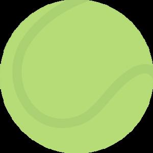 Grooming Tennis Ball