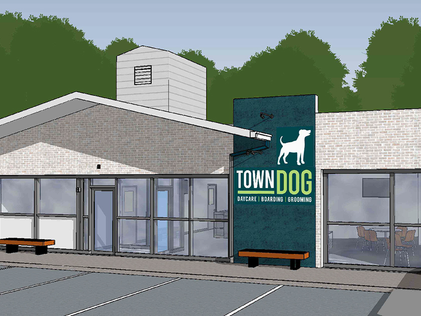 Town Dog Architectural Plans